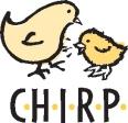 chirp_chick
